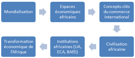 Institutions africaines (licence Afrique, L1-1)