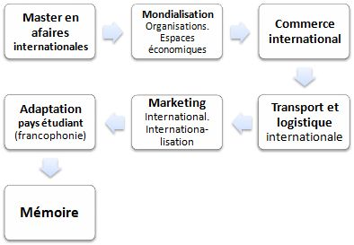 Master FOAD en affaires internationales